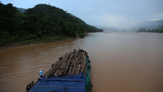 Loggers taking wood through the Amazon river